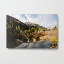 Rocky Mountain Glory Metal Print