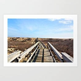 Dunes Walk Way Art Print