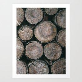 Log Ends Art Print