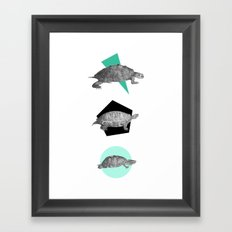 Three Old Turtles Framed Art Print