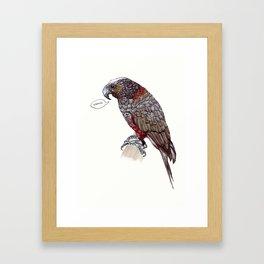 Cheeky Kaka Parrot Framed Art Print