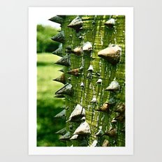 Spiked Tree (Film) Art Print