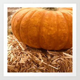 Big Orange Pumpkin On Bale Of Autumn Hay Art Print