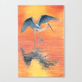 Blue Heron dance Canvas Print