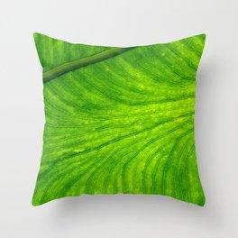 Leaf Paths Throw Pillow