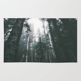 Forest XVIII Rug