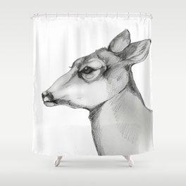 Doe a Deer/Always Shower Curtain