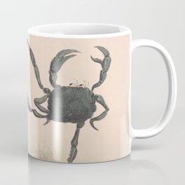 Vintage Illustration of Dancing Crabs (1849) Coffee Mug