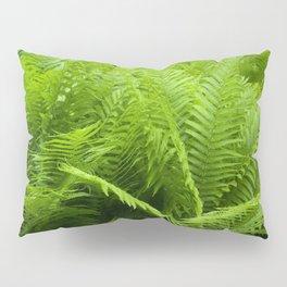 Fern Field Pillow Sham