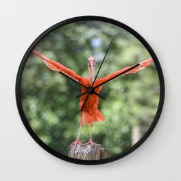 Behold My Physique and Be Awed! Wall Clock