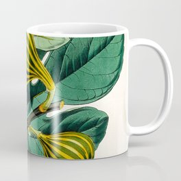 Fig plant, vintage illustration Coffee Mug