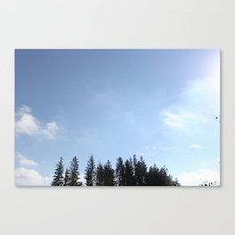 Trees. Sky. Canvas Print