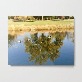 Monet's Ducks Metal Print