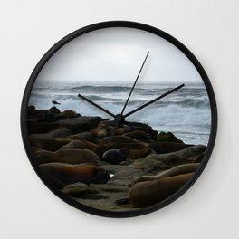 San Diego Sea Lions.....Sunbathing Wall Clock