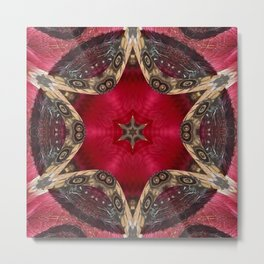 Some Other Mandala 904-905 Metal Print