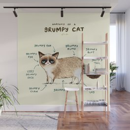 Anatomy of a Grumpy Kitty Wall Mural