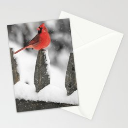 Male Cardinal on Snowy Fence Stationery Cards