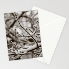 Wintry Spring Stationery Cards