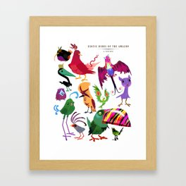 Exotic Birds of the Amazon series 1 collection Framed Art Print