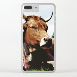Lunch break in the Alps Clear iPhone Case
