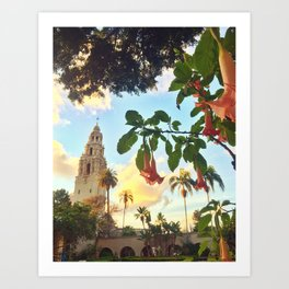 Balboa Dream Art Print