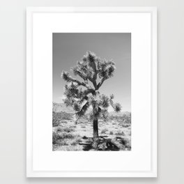 Joshua Tree Monochrome, No. 3 Framed Art Print