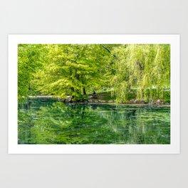 Central Park Reflection Pond Art Print