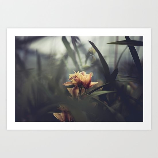 live from the orchid house Art Print