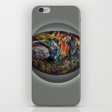 UNIVERSAL GUIDE iPhone & iPod Skin