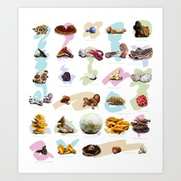 Mushroom Collection Art Print