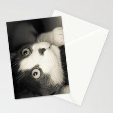 What do you think Mr Cat? Stationery Cards