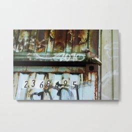 Hiding In Plain Sight Metal Print