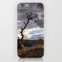 The Snag - Grand Staircase - Escalante iPhone Case