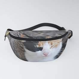 Tired and Sleepy Fanny Pack