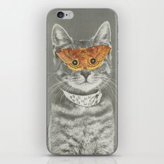 The cat's eyes have it iPhone Skin