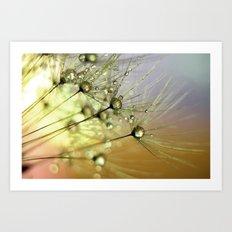 Dandelion & Droplets Art Print