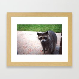 Cereal Thief Framed Art Print