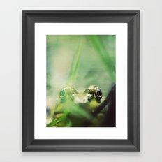 Frog's Eye View Framed Art Print