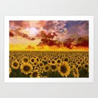 sunflowers Art Prints featuring sunflowers by Bekim ART