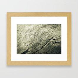 Elephant Wood of Smoothness Framed Art Print