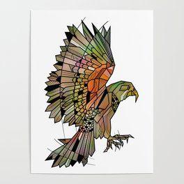 Kea New Zealand Bird Poster