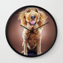 Super Pets Series 1 - Super Misiu Smiles Wall Clock