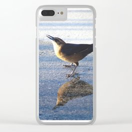 Bird on the beach Clear iPhone Case