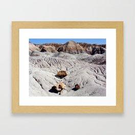 The Painted Desert & Petrified Forest Framed Art Print