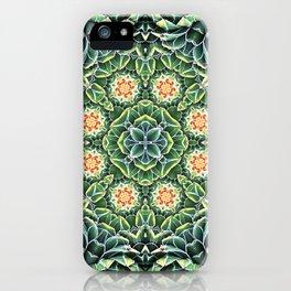 Succulent Splendor iPhone Case