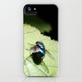 Flies can be pretty too iPhone Case