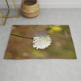 Desert White Wildflower Bloom by Reay of Light Photography Rug