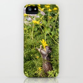 Spring Snack iPhone Case