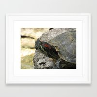 tortoise Framed Art Prints featuring Tortoise by Liya Perfidious