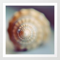 shell Art Prints featuring Shell by elle moss